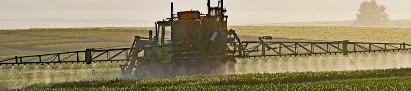 Farmer disperses herbicide to take care of weeds