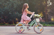 Dripe-X Girl's Bicycle Lead Paint Injuries