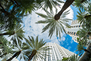 How florida tourist can file a personal injury claim in florida