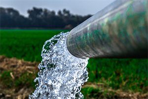 Rural well water contaminated with insecticides